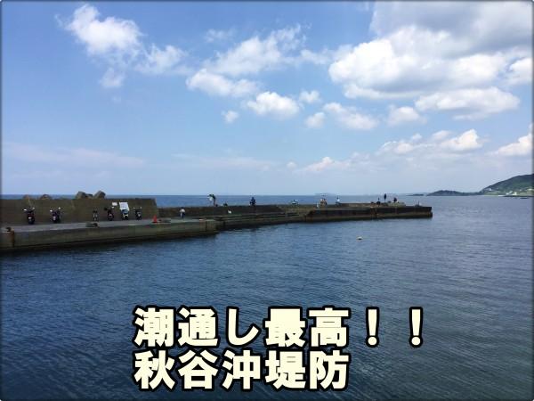 秋谷沖堤防