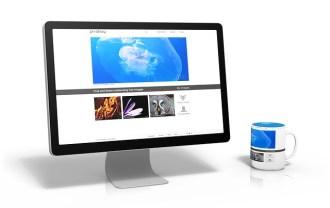 パソコンとコーヒーカップの画像