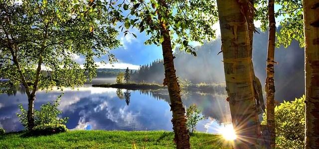 夏の湖の画像