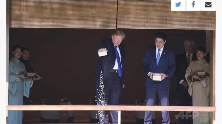 【動画】トランプ大統領の鯉餌やりにマスコミ、捏造してしまう