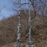 270×90×45cm 黒御影石