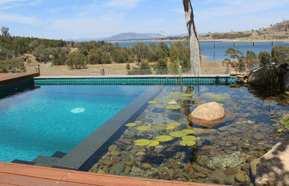 Natural Pool, Kolam Renang Alami, Sehat, dan Hemat Biaya