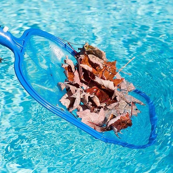 Ketahui Manfaat Leaf Skimmer Untuk Perawatan Kolam Renang