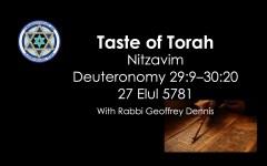 Taste of Torah - Nitzavim