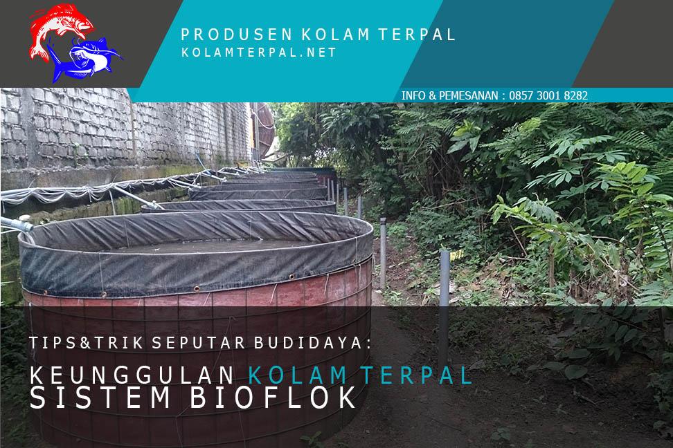 Kolam Terpal Lele: Keunggulan Budidaya dengan Sistem Bioflok