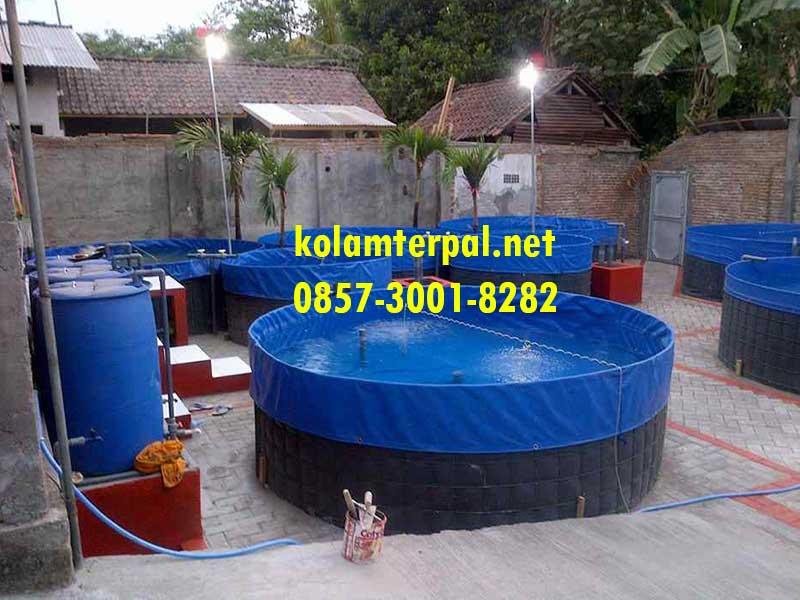 jual kolam terpal siap pakai berkualitas