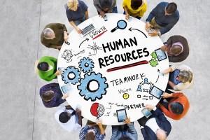 İnsan Kaynakları Yönetimi Nedir?