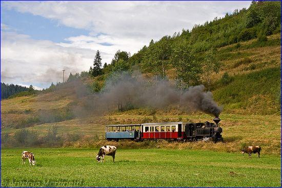 Čiernohronská železnica, fot. Antonio Martinetti, CC-BY-NC-ND, flickr.com