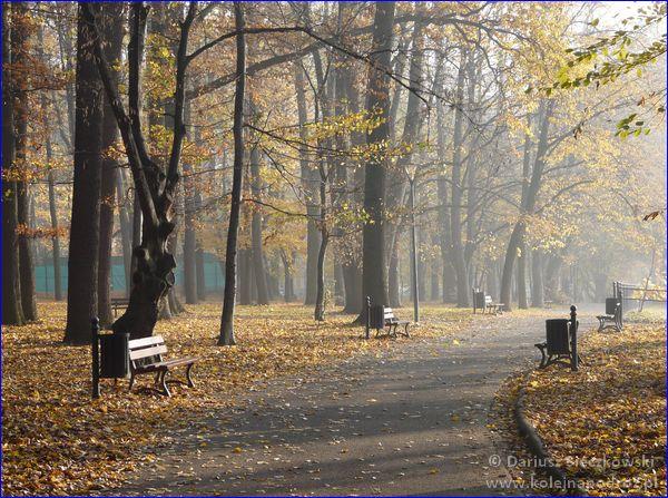 Zadbany park miejski w Prudniku