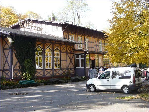 Wrzos w Goczałkowicach-Zdroju