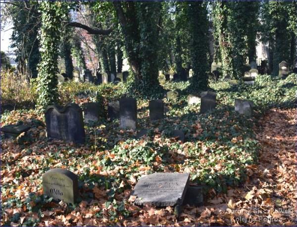 Gliwice - cmentarz żydowski