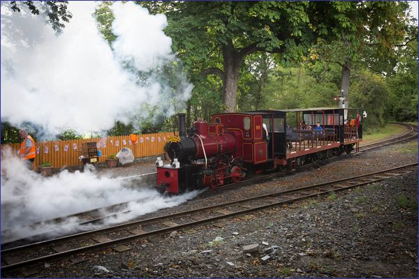Stradbally & Woodland Express