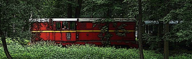 Koleje wąskotorowe w Polsce – przewodnik (2019)