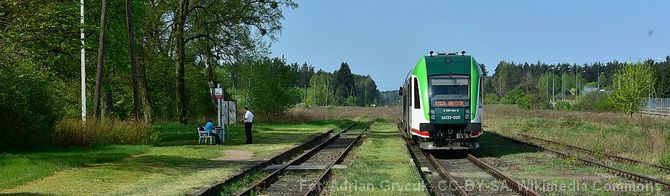Pociąg Białystok – Waliły – informacje (2021)