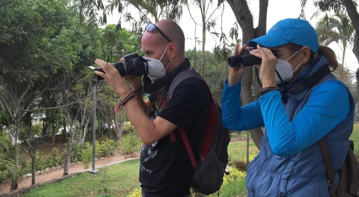 Covid 19 birding in Lima