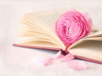 Шість внутрішніх законів для знаходження гармонії