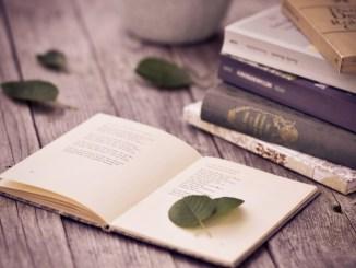 10 цікавих фактів про поезію