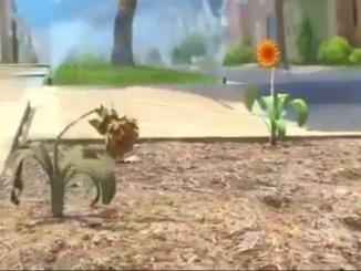Зворушливий мультфільм про сенс життя. ВІДЕО