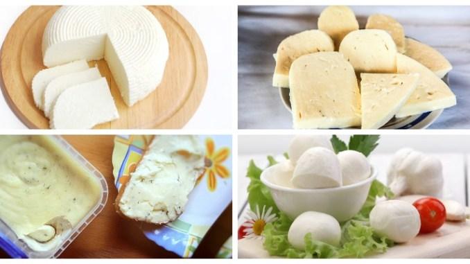 Сиру – сир! 10 рецептів, як приготувати різні види сиру в домашніх умовах