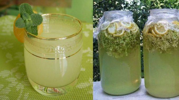 Домашній лимонад з цвіту бузини — покроковий рецепт