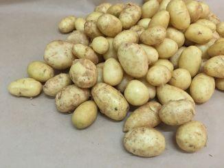 Як правильно приготувати молоду картоплю та інші секрети коренеплоду