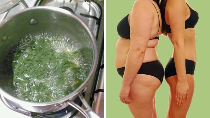 Петрушка для схуднення: як схуднути за допомогою петрушки