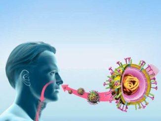 Досвідчений лікар: йод – потужна зброя проти вірусних інфекцій