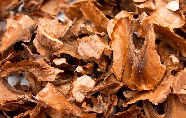 Чим корисні перегородки волоського горіха, лікувальні властивості, застосування, протипоказання