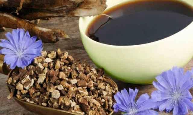 Бадьорість на весь день без кави: чому варто пити цикорій