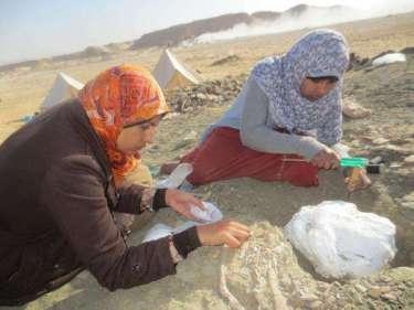 """مكتشفة """"منصورة سورس"""" أول ديناصور يكتشف على أيدي مصريين تحكي ما تعرضوا له في الصحراء ومعاناتهم لخمس سنوات 5 31/1/2018 - 6:39 م"""