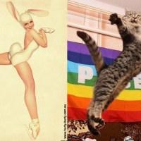 Haftanın Eğlencesi: Pin-up kızlarının pozlarını taklit eden kediler
