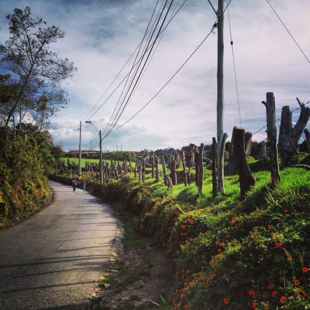 Wanderlust in Santa Elena