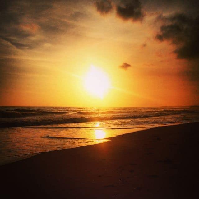 Palomino – Vom Paradies bis ans Ende der Welt Teil 1
