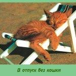 В отпуск без кошки