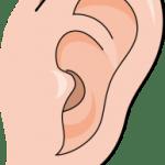 転院 慢性耳漏性中耳炎で鼓膜に穴が・・・。