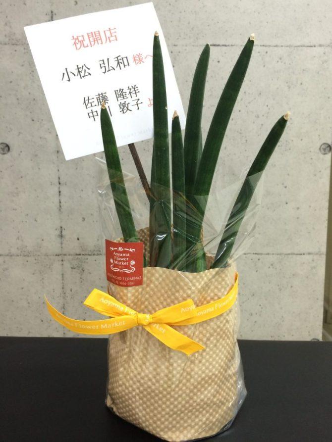開店祝いお花佐藤中川トレーナーより