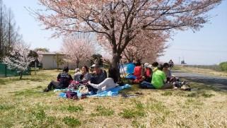 北緑地公園で昼食