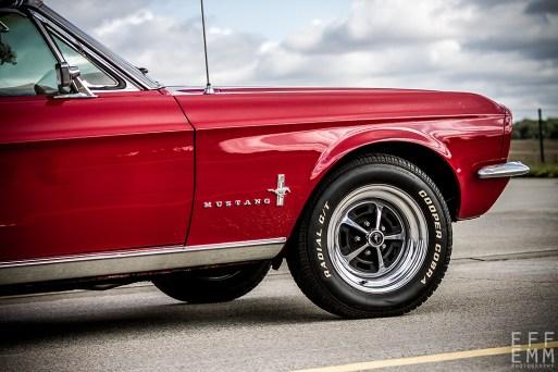 Frank Meinel - Mustang meets Mustang