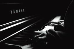 "Frank Meinel ""Piano"""