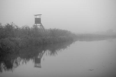"""Peer Pfütze """"Hochstand im Nebel"""""""