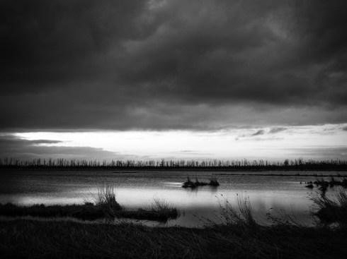 """Sven Jankowski """"Sturm und Regen"""""""