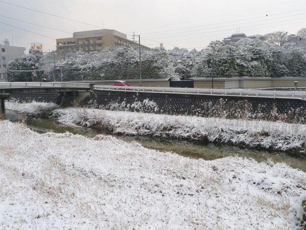雪の友泉亭公園の写真 2012年2月19日