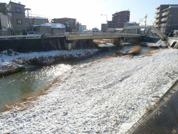 樋井川の雪の写真 2012年2月29日