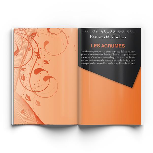 Brochure - Komedia