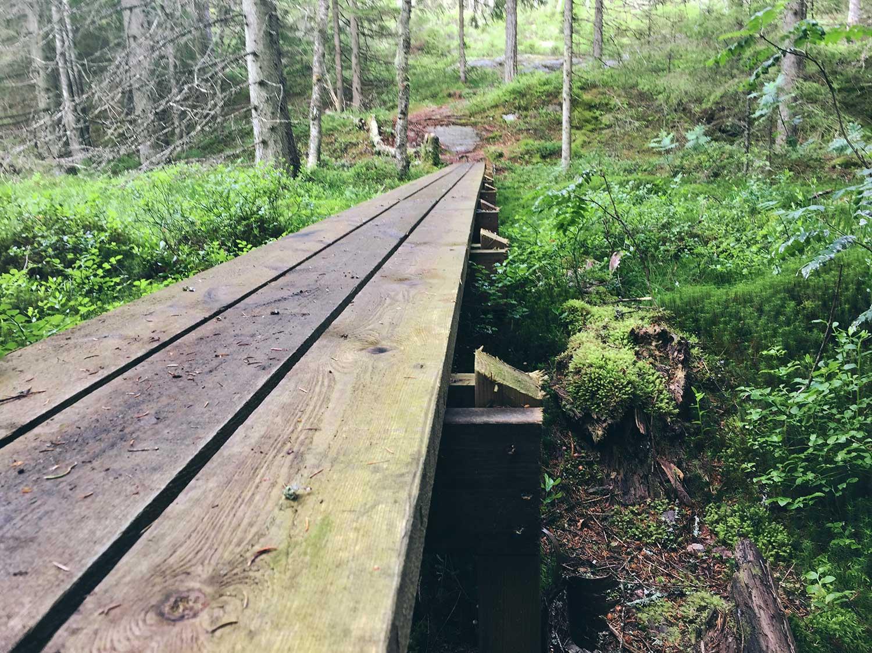 Hiking Tresticklan