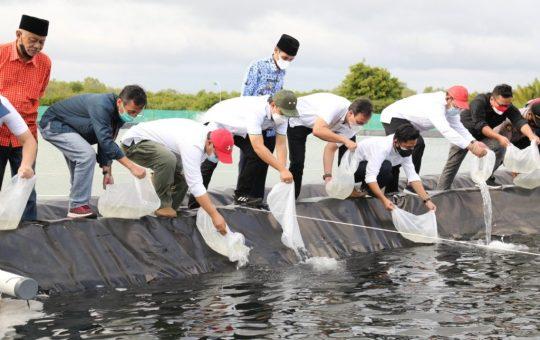 Budidaya Udang Vaname Cilacap Jadi Pilot Project Pengembangan Ekonomi Kerakyatan