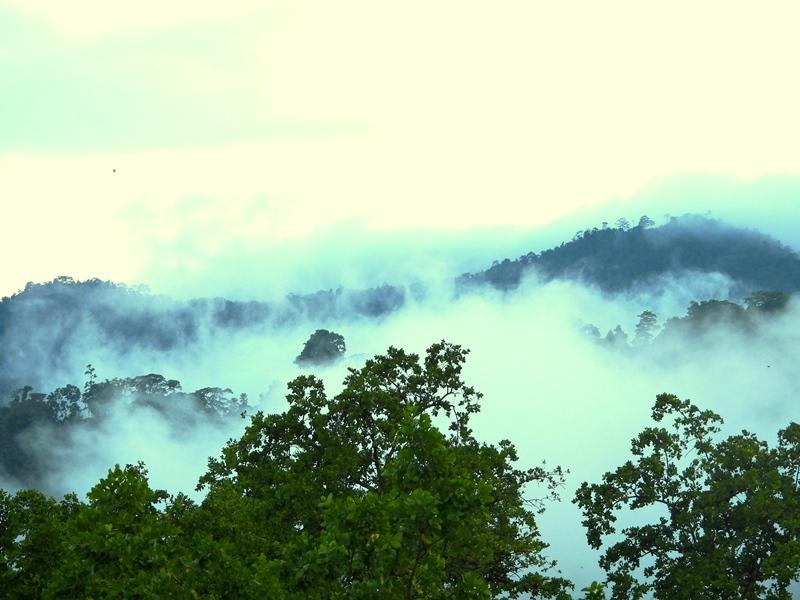 Dok. KOMIU Desa Labota Kecamatan Bahodopi Kabupaten Morowali