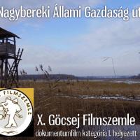 Komlói siker a X. Göcsej Filmszemlén