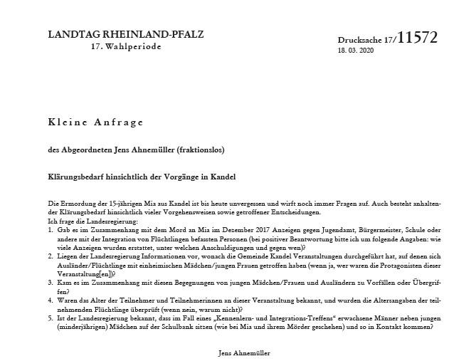"""AfD-Anti Corona-Demo: """"Ich bin stolz darauf Deutscher zu sein"""" und was dies mit Kandel zu tun hat"""