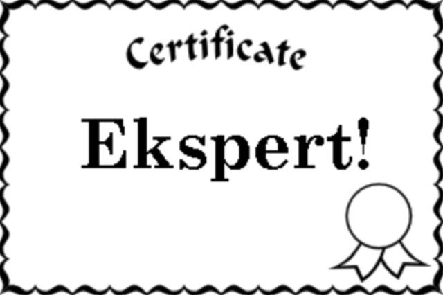 At være eller ikke at være – ekspert!